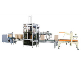 Carton Opening/Packing/Sealing System