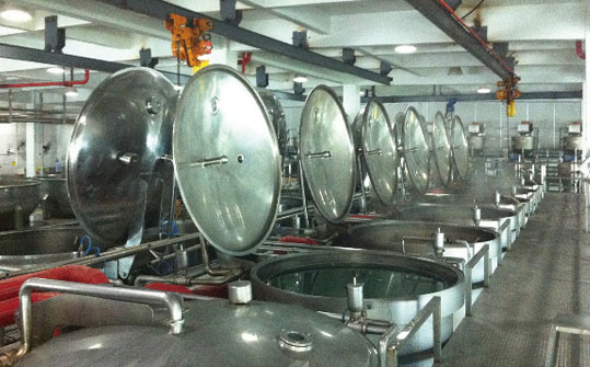 Tea Extraction System