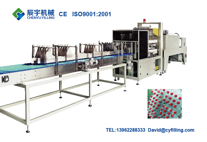 Automatic Film Shrink Wrapper Machine