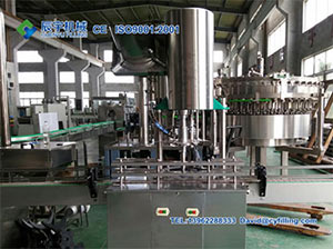 Introduction of Rotary Capping Machine-Chenyu Water Filling Machinery